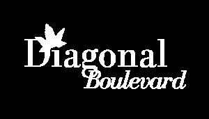 Diagonal Boulevard